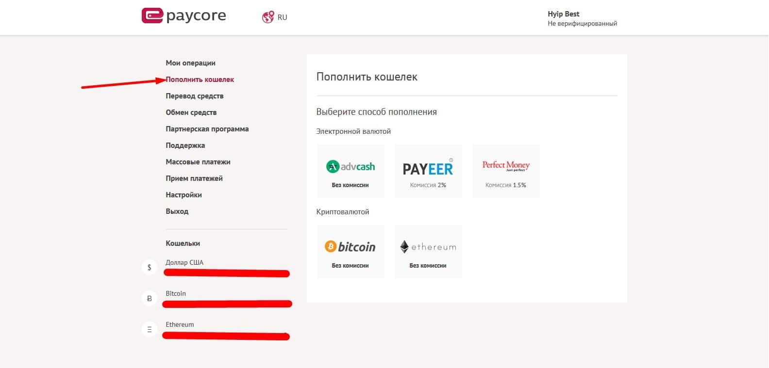 Обзор инновационной платежной системы ePayCore