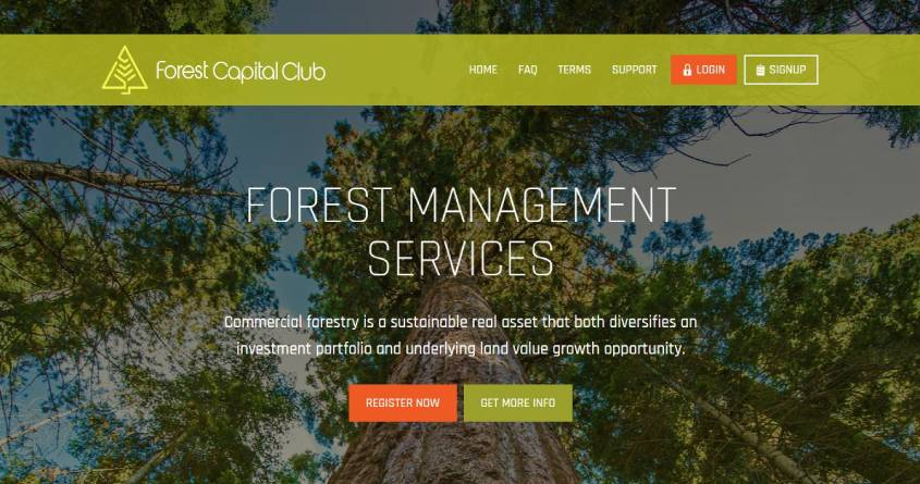 Forestcapital: обзор низкодоходного проекта, отзывы о forestcapital.club. Плачу рефбек 1% (Прекратил работу)